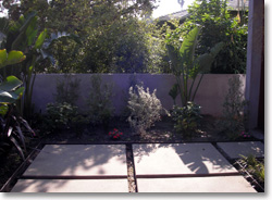 concrete pads with plantings