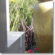 container plantings and water feature with block wall and stucco